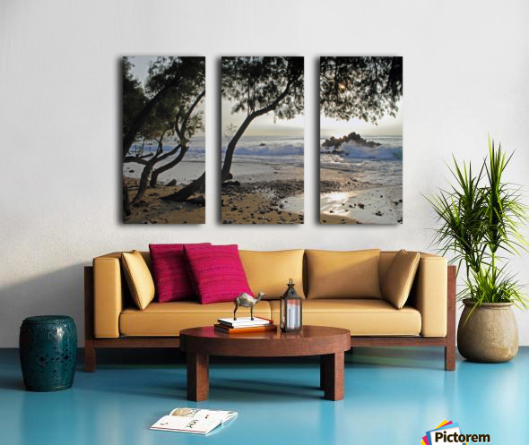 Wild Hawaii Beach Split Canvas print