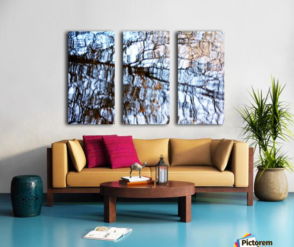 Searching For Spring Split Canvas print