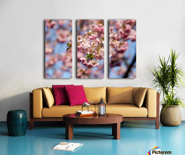 Cherry blossom Red Split Canvas print