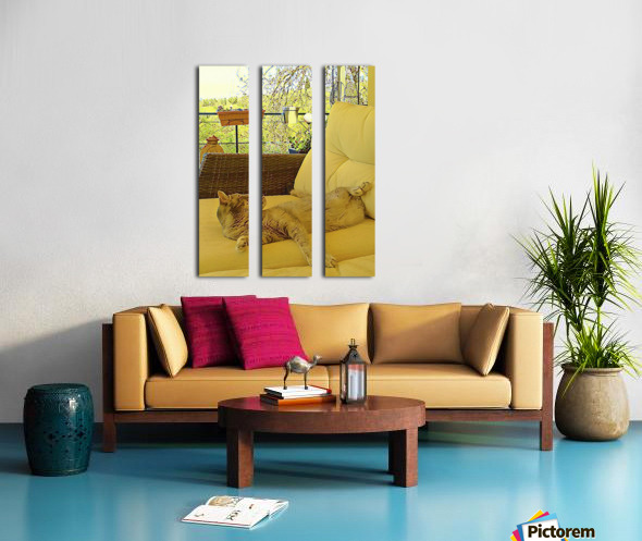 Lounging Around Split Canvas print