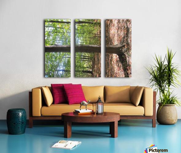 Landscape (60) Split Canvas print