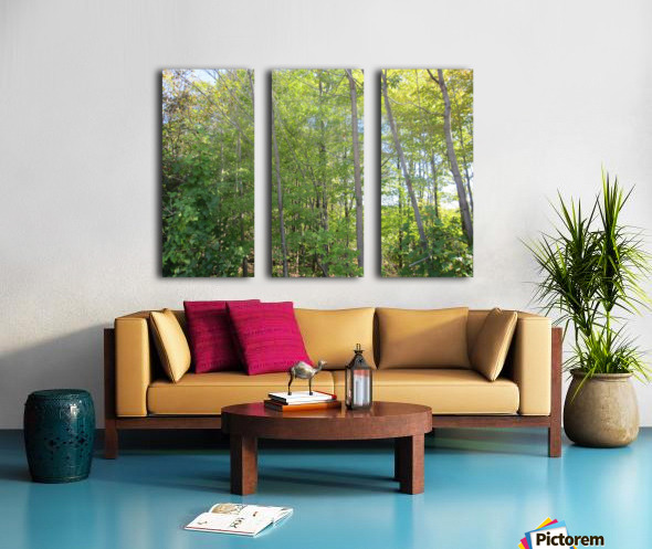 Landscape (288) Split Canvas print