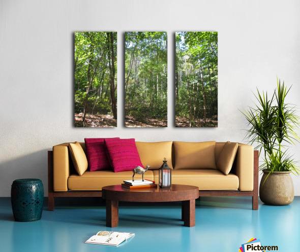 Landscape (176) Split Canvas print