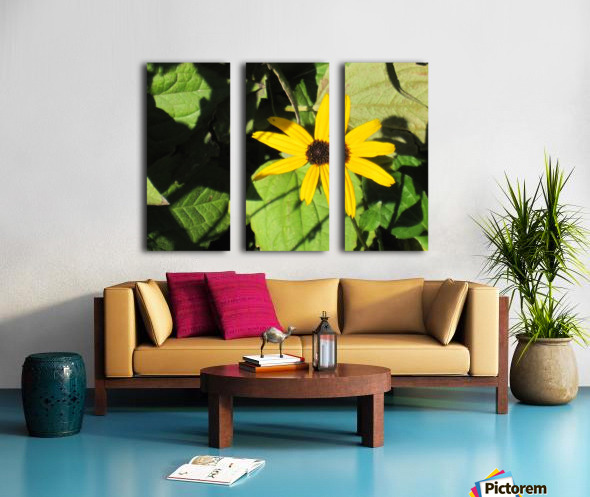 Flowers (62) Split Canvas print