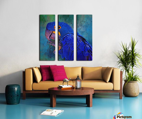 Hyacinth Macaw Split Canvas print