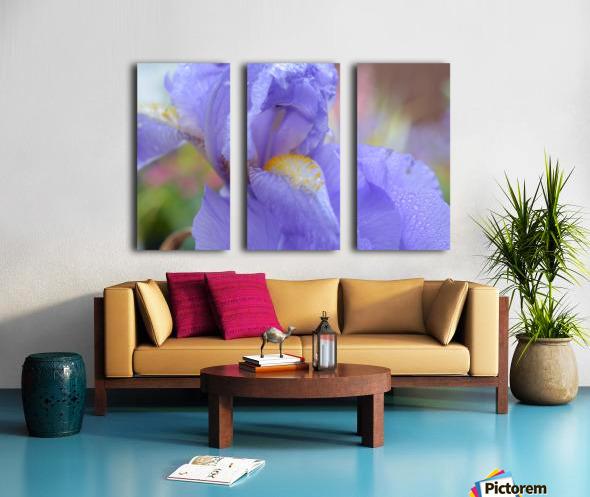 Purple Iris Photograph Split Canvas print