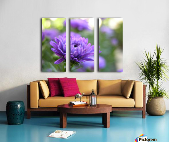Blue Flower Photograph Split Canvas print