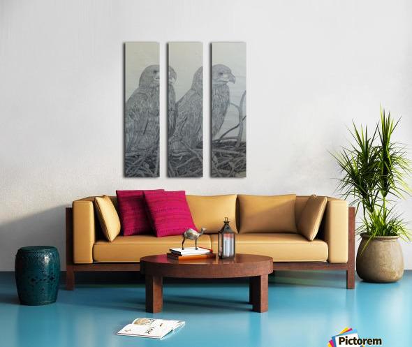 Eagles Split Canvas print