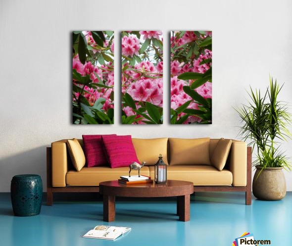 Flower Split Canvas print