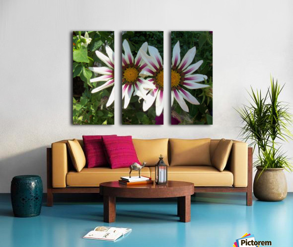 Saskatchewan Flowers Split Canvas print