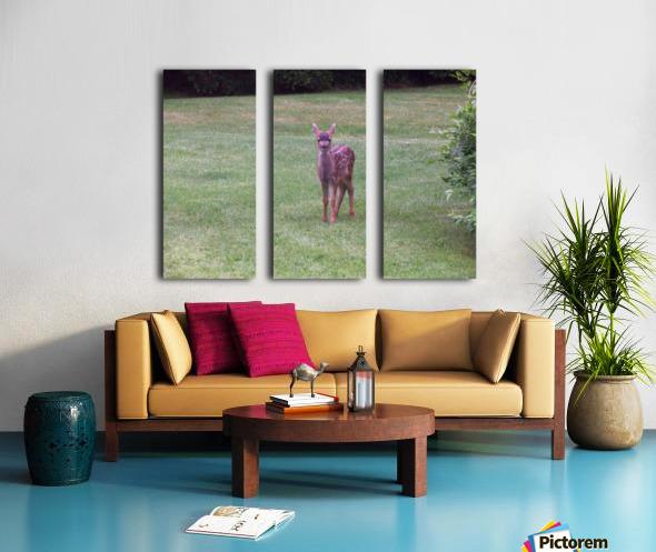 Deer Split Canvas print