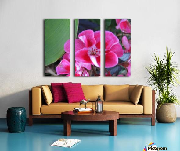 Flower (2) Split Canvas print