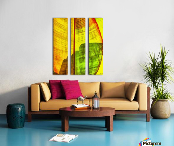 HC0333 Split Canvas print