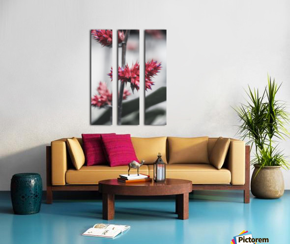 spiked flower Split Canvas print