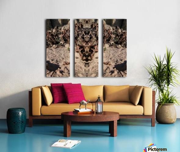 Ox Split Canvas print