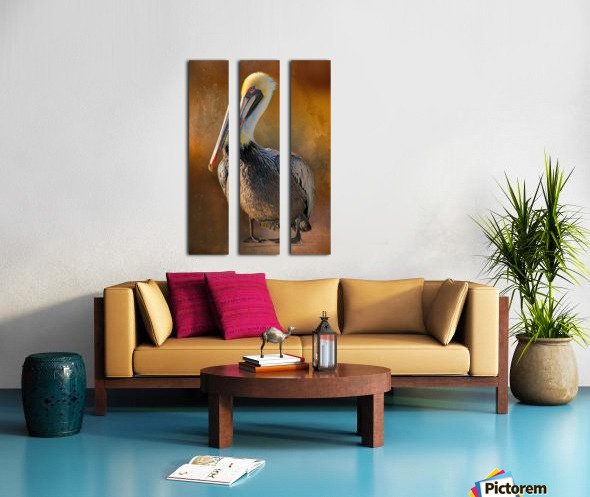Brown Pelican Portrait Split Canvas print