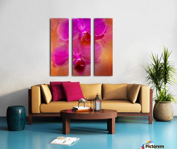 Colorful Phalaenopsis Split Canvas print
