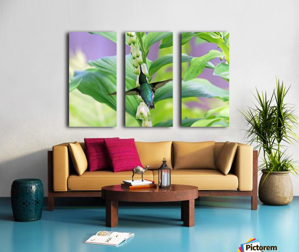 Hummer And Solomon Seal Split Canvas print