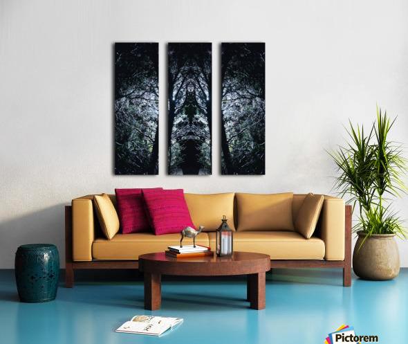 Lord of Shadows Split Canvas print