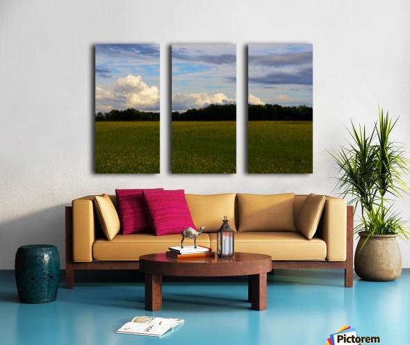 Champ ensoleille- Sunny field Split Canvas print