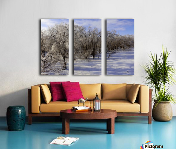Matin glace- Iced morning Split Canvas print