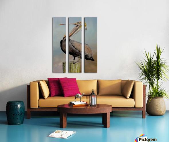 Belly Laugh-Brown Pelican  Split Canvas print