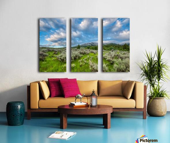 Goodenough Canyon Landscape Split Canvas print