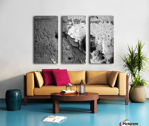 Switch Split Canvas print