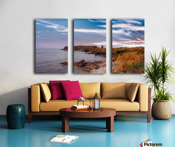 Papoa Split Canvas print