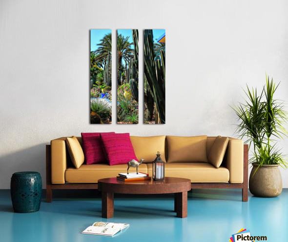 Giant Cacti Jardin Majorelle Marrakech Split Canvas print