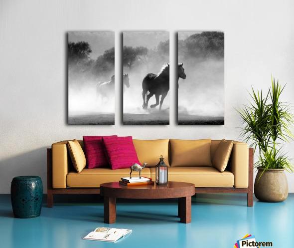 horse herd dust nature wild Split Canvas print
