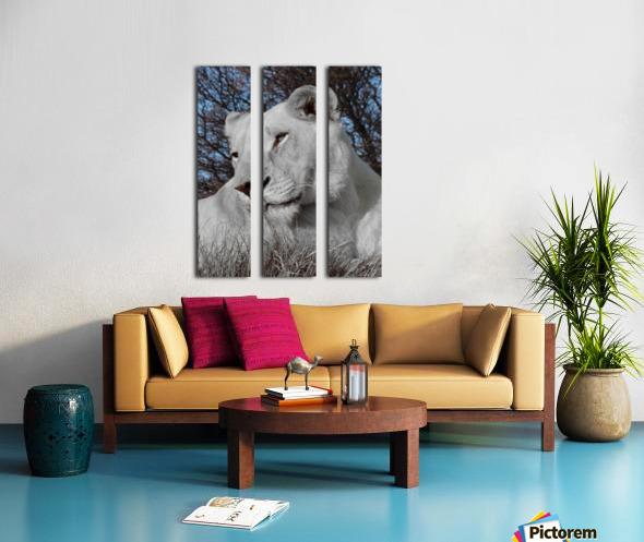 White Lion Female 1030593 Split Canvas print