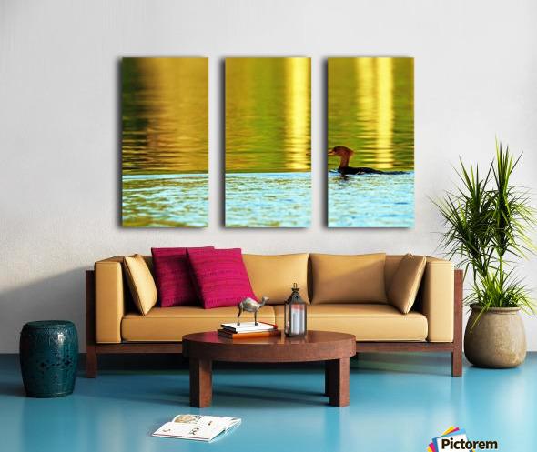 Merganser In Setting Sun Split Canvas print