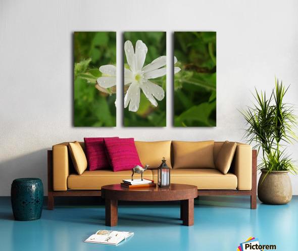 Flower shower Split Canvas print