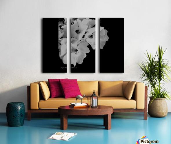 Prose Split Canvas print