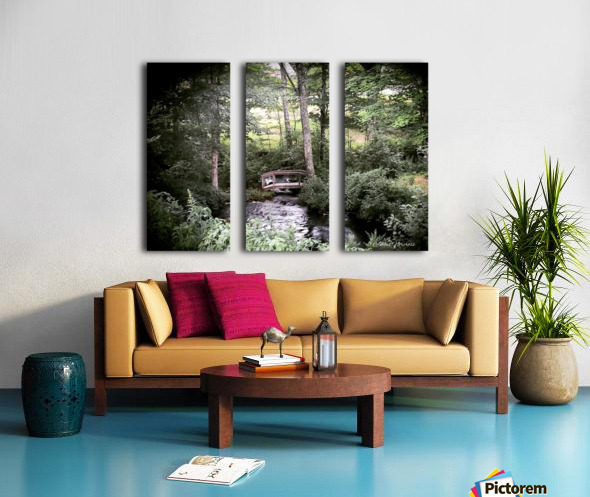 Hidden path Split Canvas print