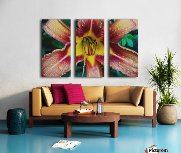 Eye of the tiger lily Split Canvas print