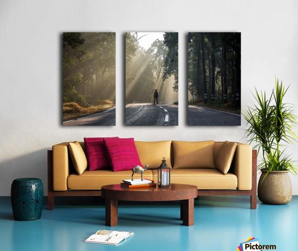 DSC_9746 Split Canvas print