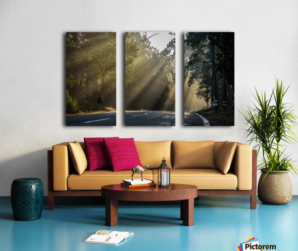 DSC_9742 Split Canvas print