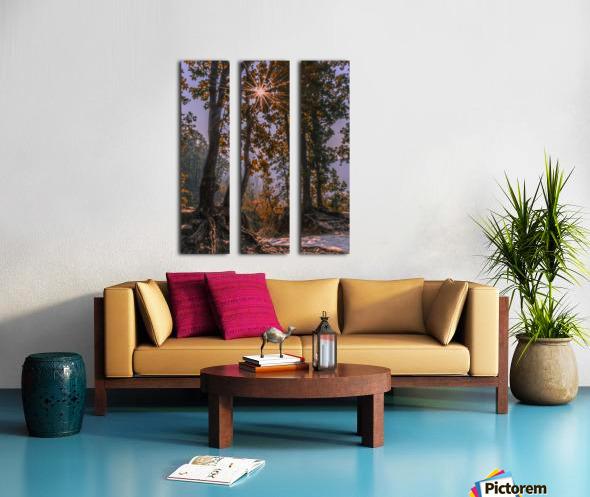 DSC_0328 Split Canvas print