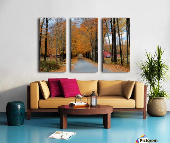 Autumn Three Maple Dr. Manchester VT Split Canvas print