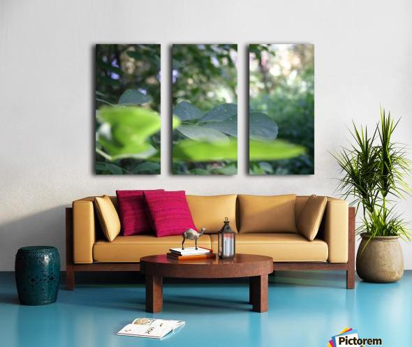 blur leaf Split Canvas print