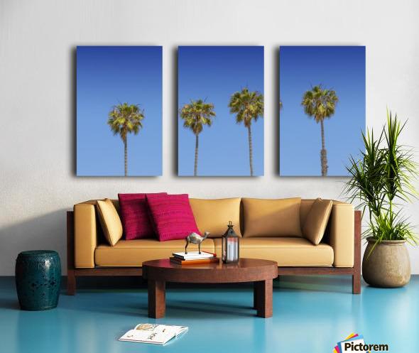 Lovely Palm Trees   Panorama Split Canvas print