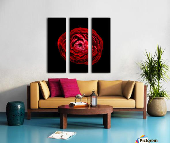 Anemone_3 Split Canvas print