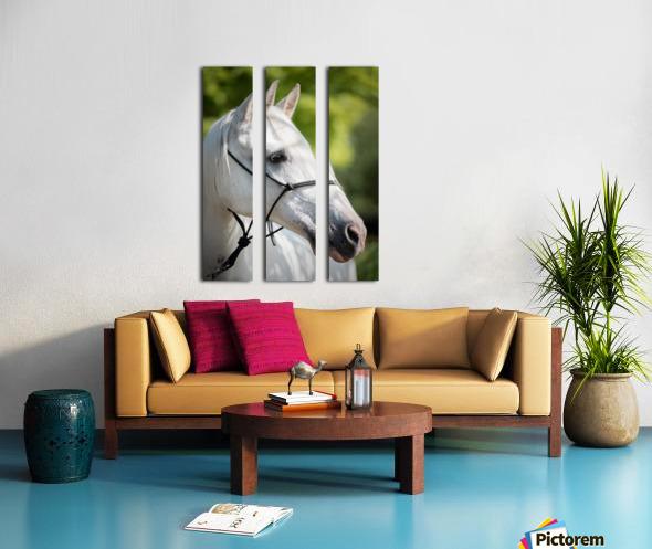 Horse Portrait Split Canvas print
