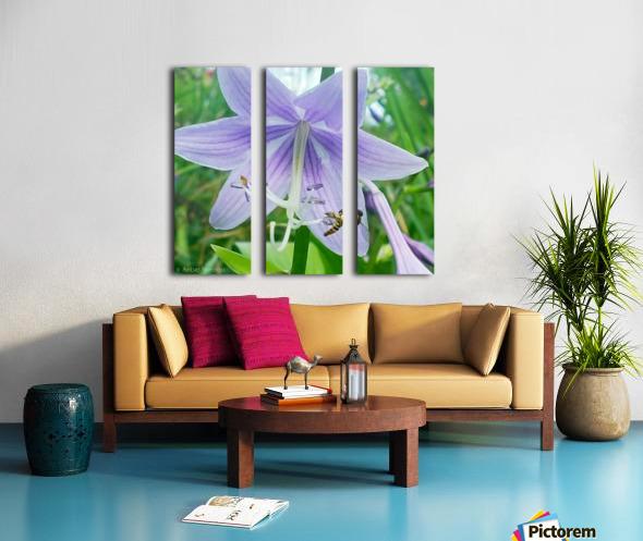 Purple flower Split Canvas print