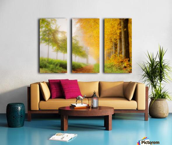 Autumn Colors Split Canvas print
