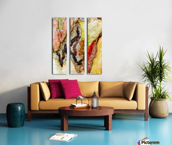 Aussie Gum Tree Bark - 9 Split Canvas print