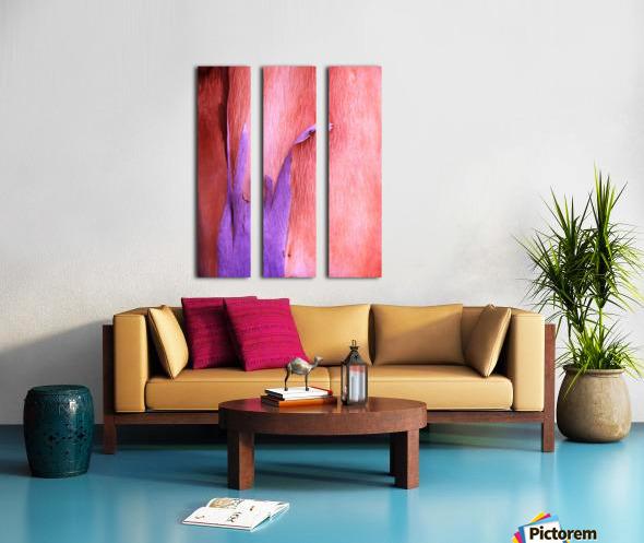 Salmon Gum Tree Bark 8 Split Canvas print