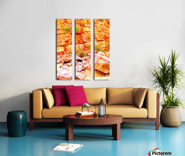 Surviving - Ormiston Gorge Split Canvas print